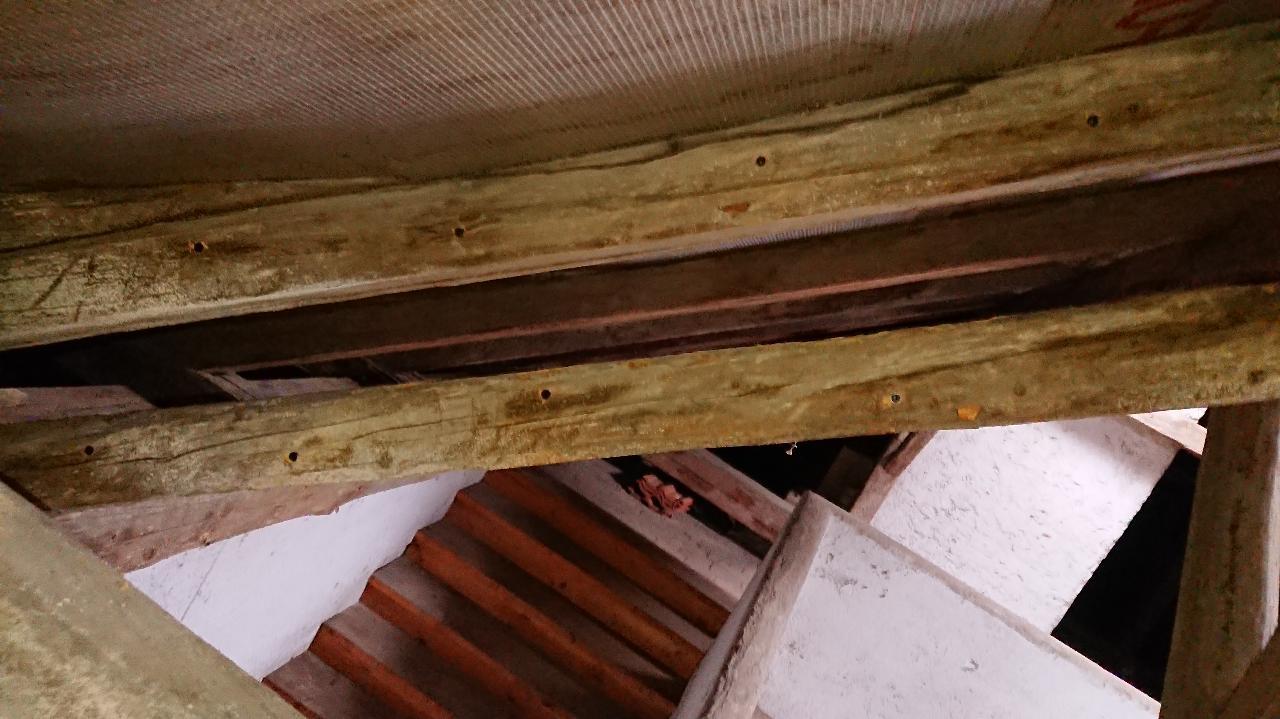 Ukázka střešního trámoví po ošetření